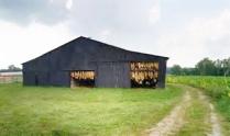 tobacco-barn